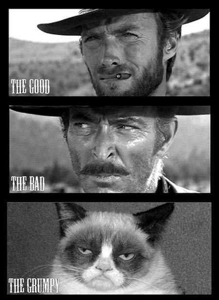 movies Memes Clint Eastwood Grumpy Cat the good the bad and the ugly Cats - 6897673472