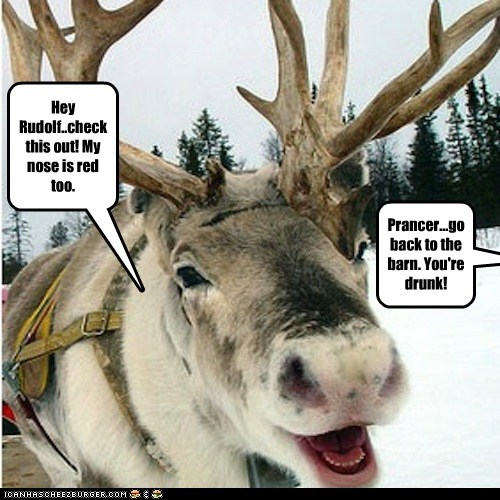 go home you're drunk christmas prancer red nose reindeer rudolph