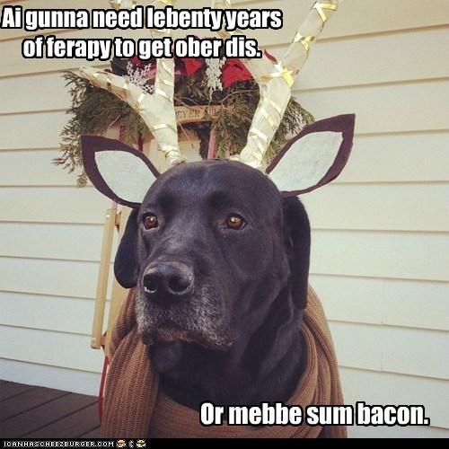 costume,dogs,labrador,therapy,antlers,bacon