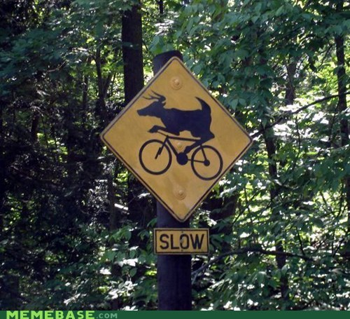 sign wtf slow - 6898174464