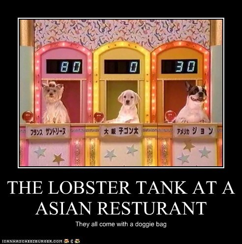 THE LOBSTER TANK AT A ASIAN RESTURANT They all come with a doggie bag