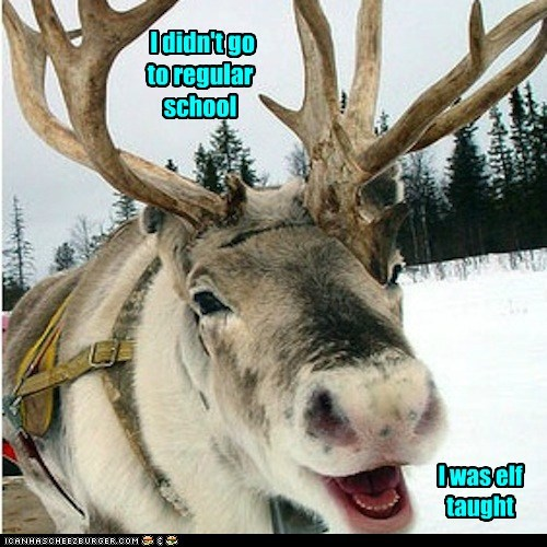 taught school elf reindeer puns - 6898398720