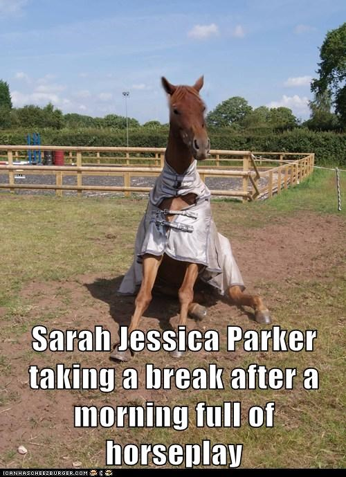 sarah jessica parker,horseplay,horses,sitting,break