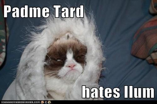 Padme Tard  hates Ilum
