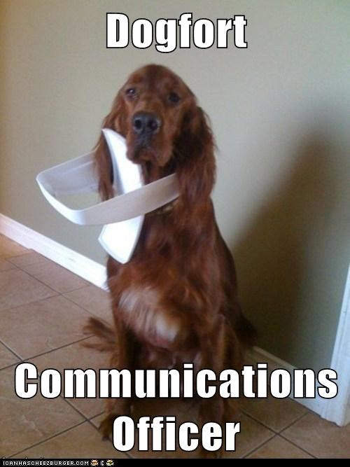 Dogfort Communications Officer