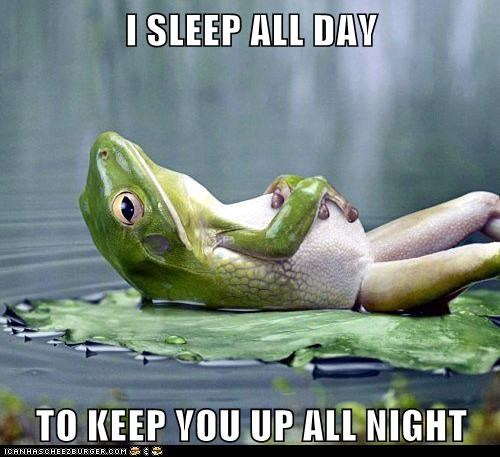 job lilypad all day sleeping all night resting frogs - 6899177728