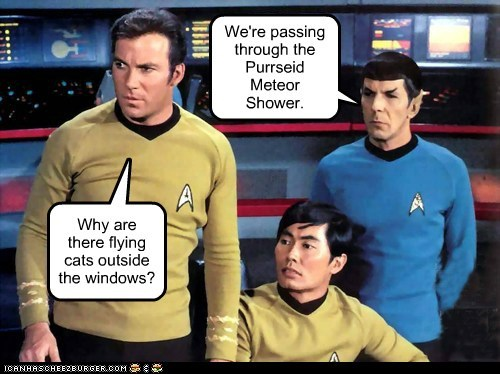 Why are there flying cats outside the windows? We're passing through the Purrseid Meteor Shower.