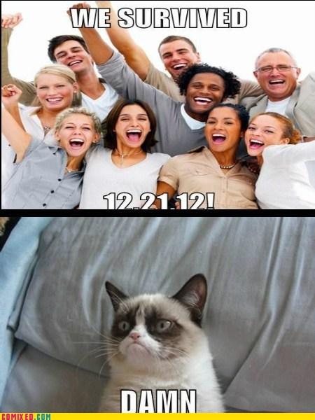 Grumpy Cat,mayan apocalypse