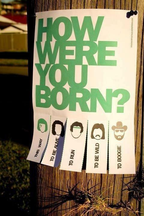 flyers,born