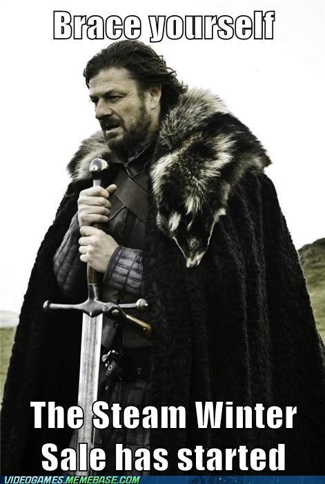 brace yourselves,steam sale,Memes,no more monies