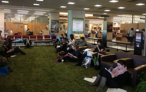 studying lawn library college - 6900978688