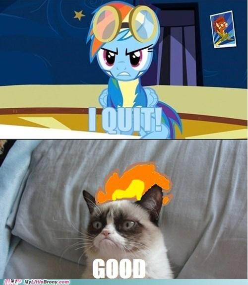 Memes,wonderbolts,Grumpy Cat,tard