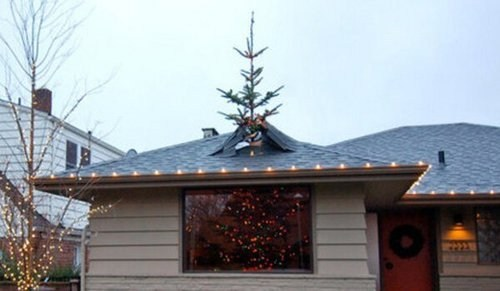 big tree christmas christmas tree big christmas tree g rated there I fixed it - 6901349888