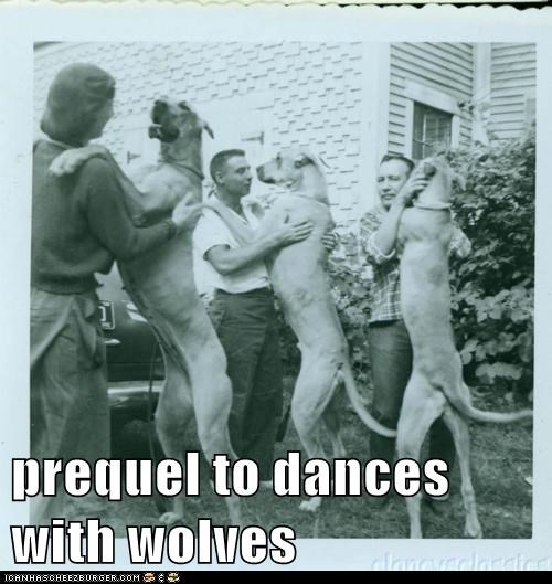dogs great danes dance