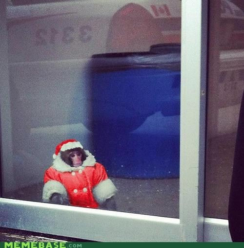 ikea monkey jingle memes santa claus - 6901505024