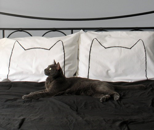 cat,outline,pillowcase,bed,decor,pillows,sleep,home