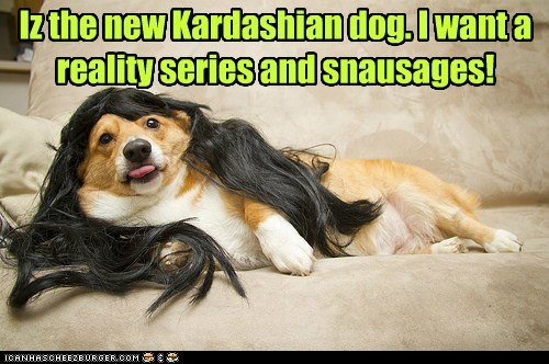 kardashians,dogs,long hair,wig,corgi,snausages,reality tv