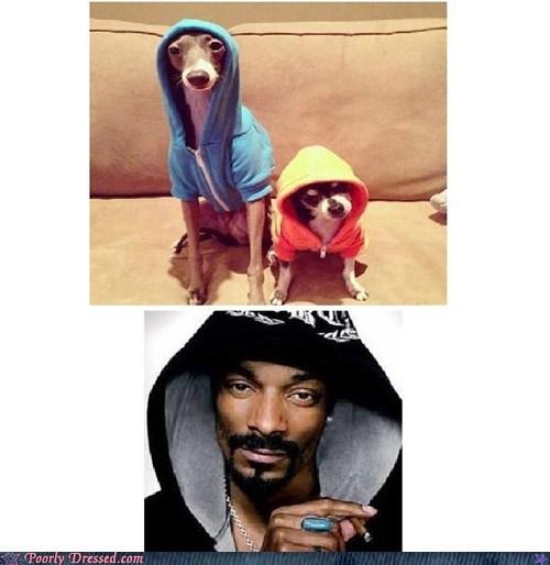 hoodies doggs snoop dogg - 6905495040