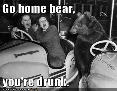 scary,drunk,bears,bumper cars