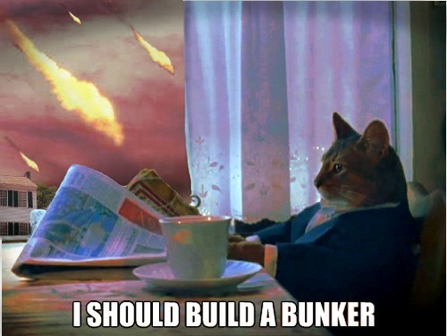 bunkers,apocalypse,i should buy a boat,Memes,Armageddon,Cats