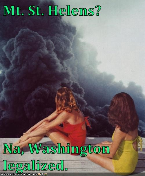 drugs legal legislation washington volcano