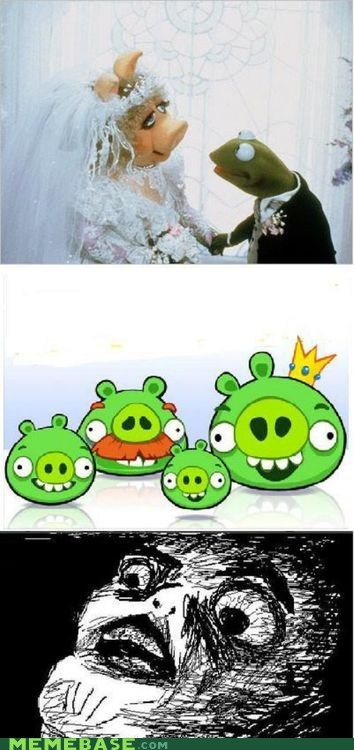 kermit the frog,angry birds,raisin face,miss piggy