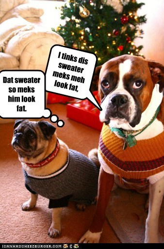 I tinks dis sweater meks meh look fat, Cleverness Here Dat sweater so meks him look fat.