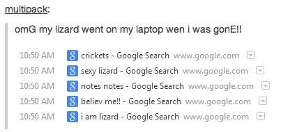 browser history,ruined,lizard,google