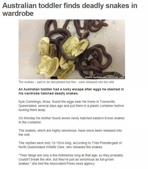 news pets creepy snakes Probably bad News - 6906993664