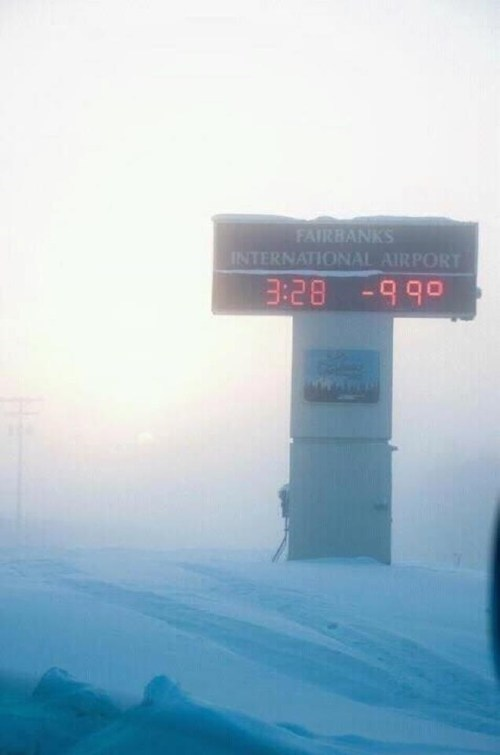sign,freezing,snow,cold,winter,fail nation,g rated