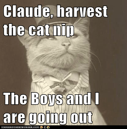 Claude, harvest the cat nip  The Boys and I are going out
