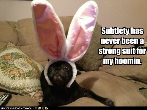 obvious,subtle,dogs,pug,rabbit ears,big ears