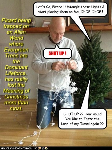 Picard being trapped on an Alien World where Evergreen Trees are the Dominant Lifeforce, has really lost the Meaning of Christmas more than most. Let's Go, Picard ! Untangle those Lights & start placing them on Me, CHOP-CHOP ! SHUT UP ! SHUT UP ?? How would You like to Taste the Lash of my Tinsel again ??