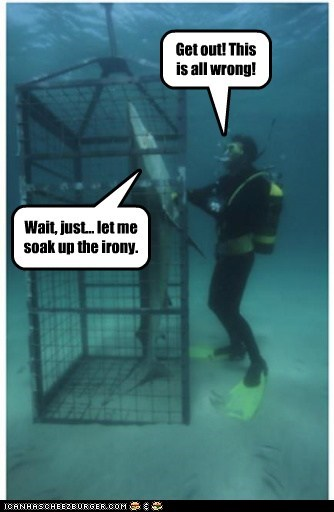 cage,wrong,sharks,basking,laughing,irony