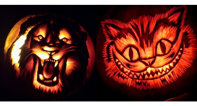 animal pumpkin carvings