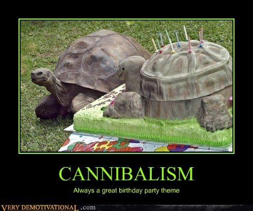 birthday cannibal turtle