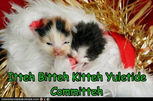 Itteh Bitteh Kitteh Yuletide Committeh