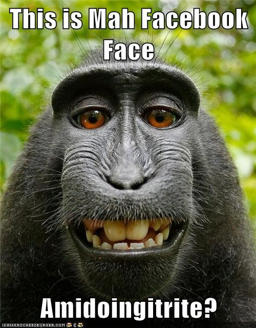 am i doing it right face monkeys self pics facebook - 6909922816