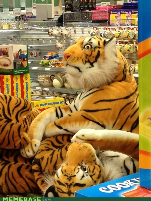 horror stuffed animals tigers dat face