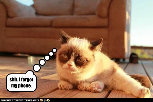 why grumpy cat is grumpy...