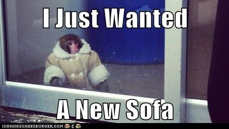 ikea monkey,sofa
