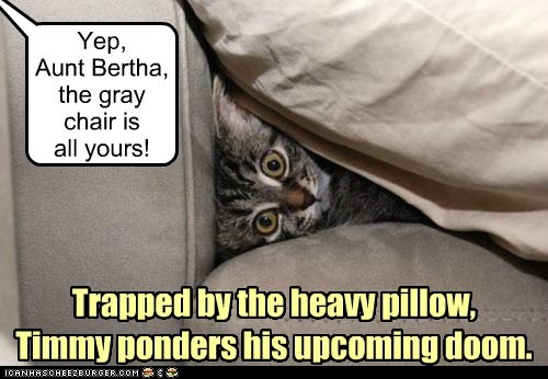 Yep, Aunt Bertha, the gray chair is all yours! Trapped by the heavy pillow, Timmy ponders his upcoming doom.