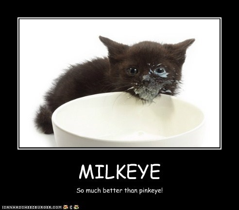 MILKEYE So much better than pinkeye!