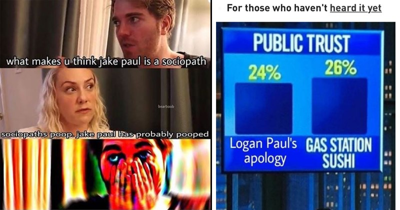 suicide forest scandal logang paulers jerika wtf logan paul jake paulers internet celebrity youtube cringe aokigahara its everyday bro jake paul Japan controversy erica costell logangster trainwreck celebrities roast shane dawson team ten team 10 - 6911749