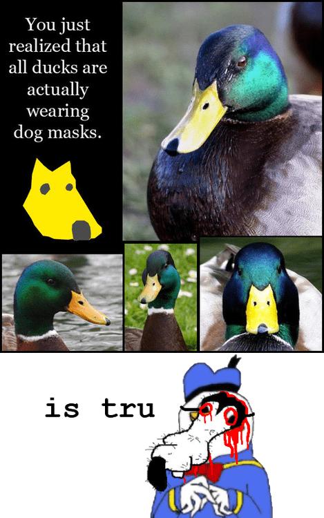 duck mask,duck,gooby,meme,classic