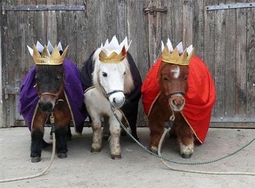 three wise men donkeys - 6915377408