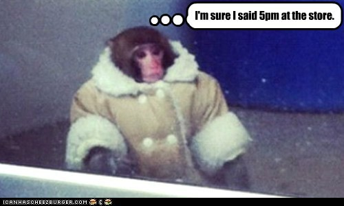 monkeys,ikea monkey,date,waiting,stood up,store