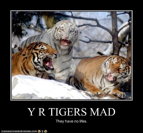 Y R TIGERS MAD They have no lifes.