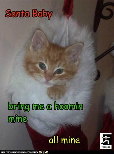 Santa Baby bring me a hoomin mine all mine