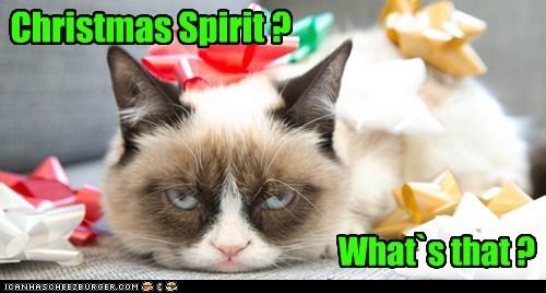 Christmas Spirit ?